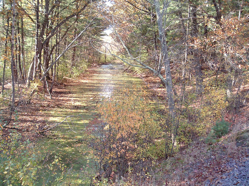 Middlesex Canal in Fall Colors